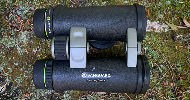 Vanguard Endeavor ED 10x42 Binoculars Review From Above