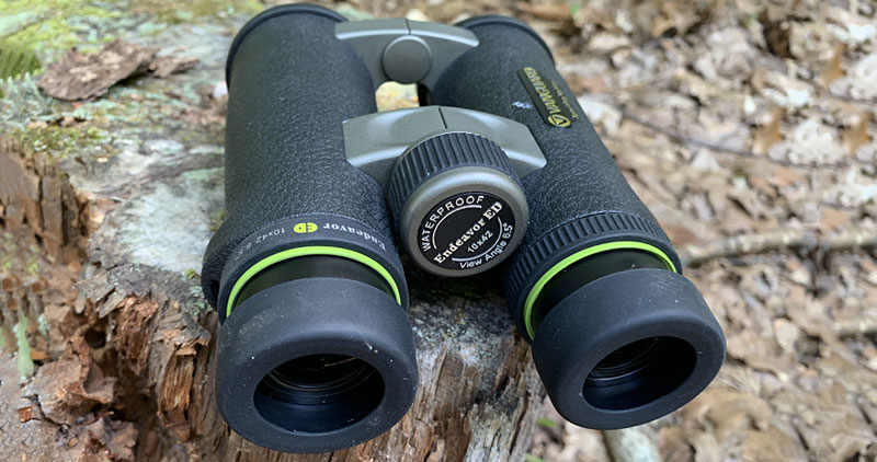 Vanguard Endeavor ED 10x42 Binoculars Review From Behind