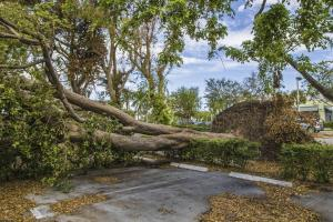 Shelter in Place: 4 Ways You Must Prepare for Any Season